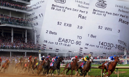 How to make to profit from horse race?